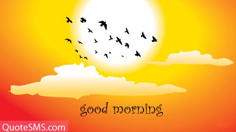 Good Morning SMS Pictures