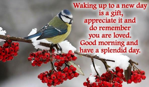Good Morning Sayings for Him