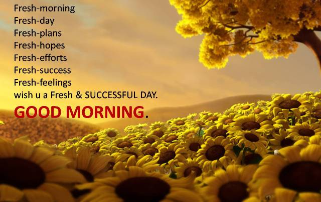 Happy Good Morning Love SMS