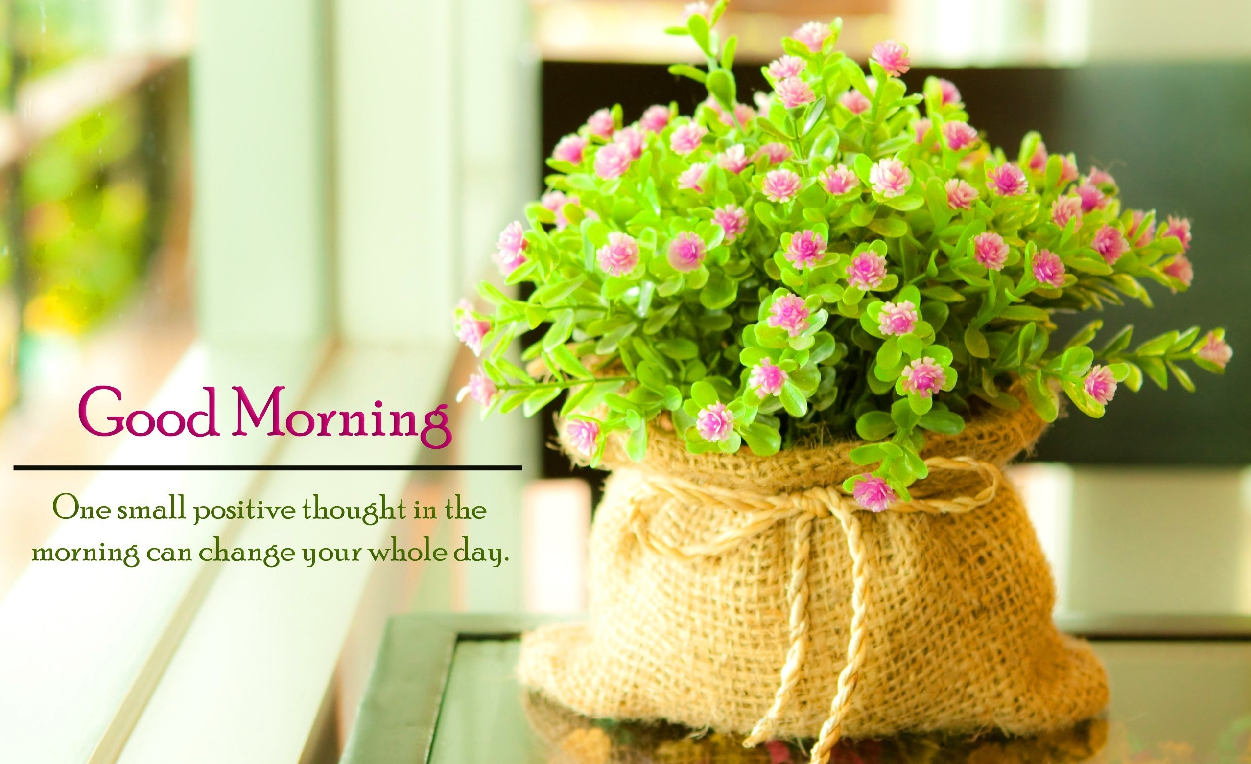 Best Happy Good Morning Messages in Hindi Sweet Good Morning msg
