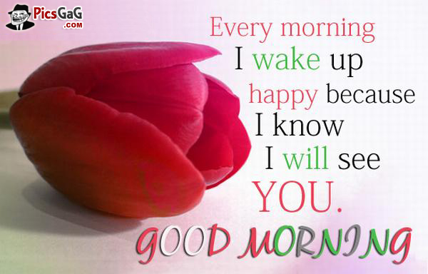 I Love You GoodMorning Wishes Messages Pictures